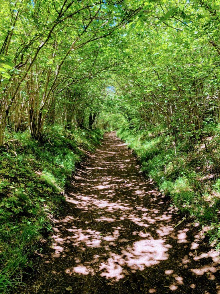 Puy Pariou